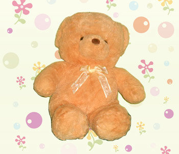 Brown-color-teddy