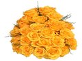 24 Yellow Roses Bunch