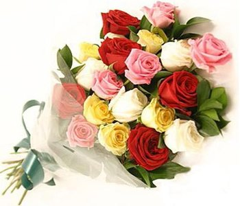 24-mixed-roses-bunch