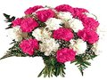 12 Mixed Colors Carnations Bunch