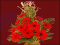 9 Gerberas and 3 Asiatic Lily Arrangements