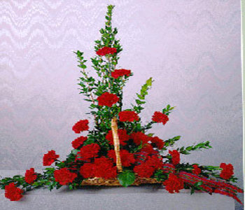 Arrangement-of-12-carnations